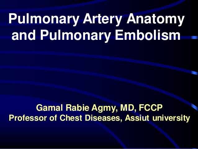 Pulmonary Artery Anatomy and Pulmonary Embolism