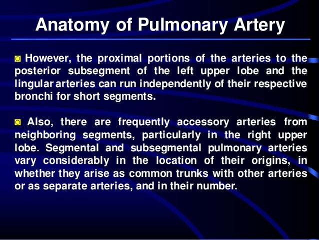 Pulmonary Artery Anatomy and Pulmonary Embolism