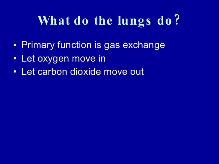 pulmonary function test ppt pdf