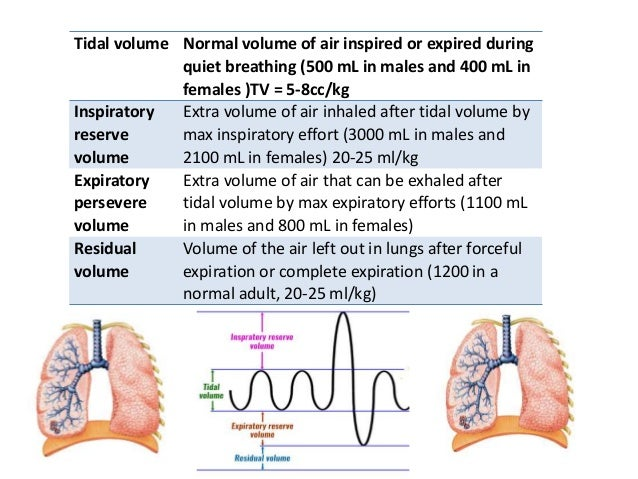 Lung capacities • These are combinations of two or more lung volumes • 1. Inspiratory capacity • 2. Functional residual ca...