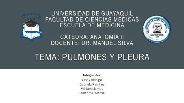 UNIVERSIDAD DE GUAYAQUIL FACULTAD DE CIENCIAS MÉDICAS ESCUELA DE MEDICINA CÁTEDRA: ANATOMÍA II DOCENTE: DR. MANUEL SILVA T...