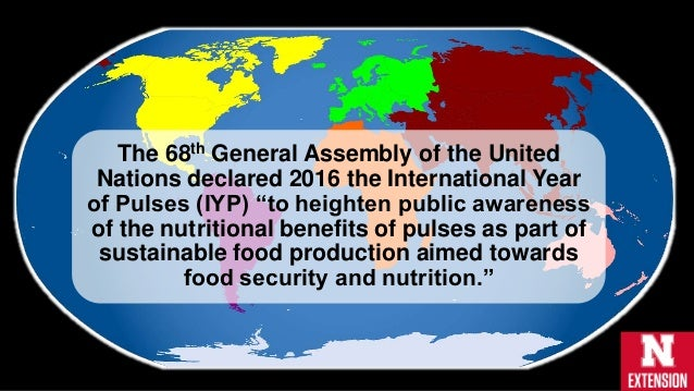 Define Sustainable Food Production