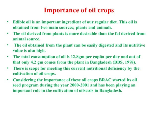 importance of oil In the modern civilization, oil has great significance however, many people do  not consider oil to be of great significance because they only associate it with the .