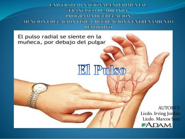 AUTORES: Licdo. Irving Jordán Licdo. Marcos Soto