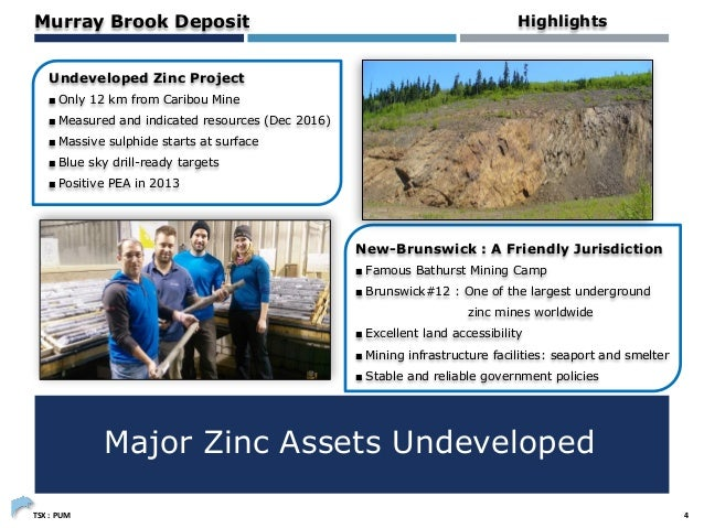 afdd35d80be4 Puma Exploration Inc. - Project Summary