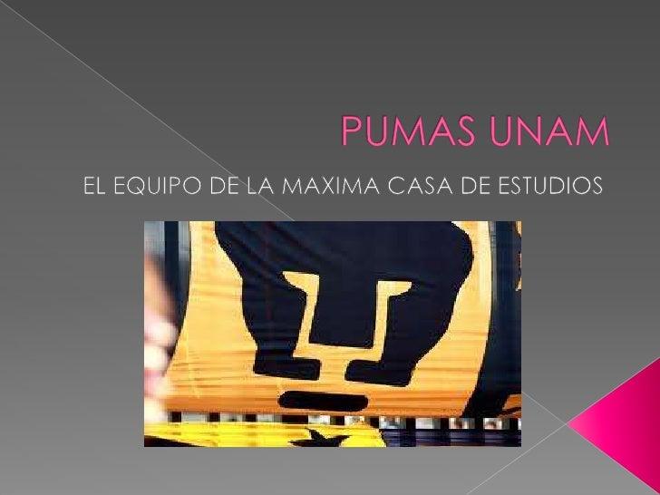 PUMAS UNAM<br />EL EQUIPO DE LA MAXIMA CASA DE ESTUDIOS<br />