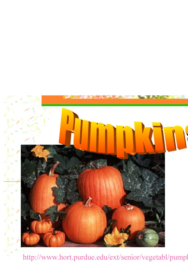 http://www.hort.purdue.edu/ext/senior/vegetabl/pumpkin1.htm Pumpkins!