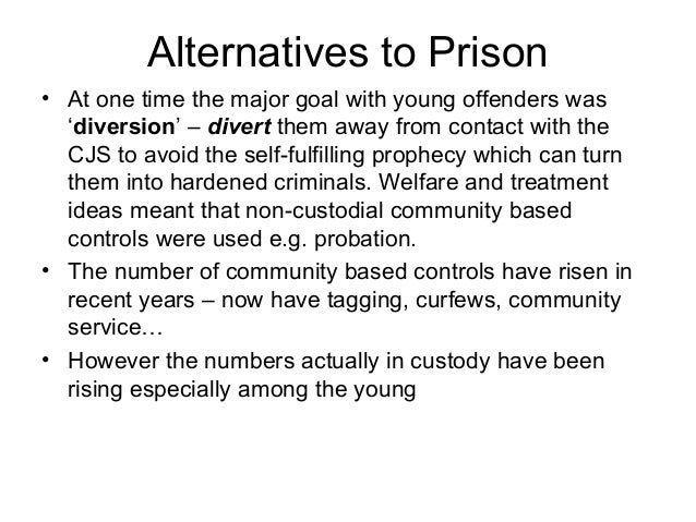 Persuasive Essay About Incarceration vs Rehabilitation