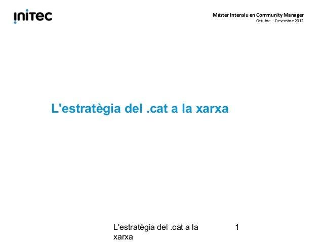 Màster Intensiu en Community Manager                                                         Octubre – Desembre 2012Lestra...