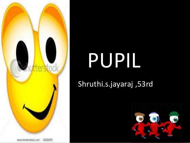 PUPIL Shruthi.s.jayaraj ,53rd