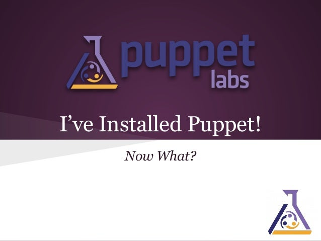 I've Installed Puppet! Now What?