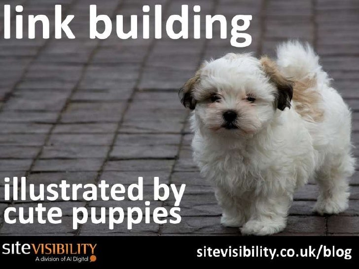 How To Do SEO Link Building- Illustrated By Cute Puppies