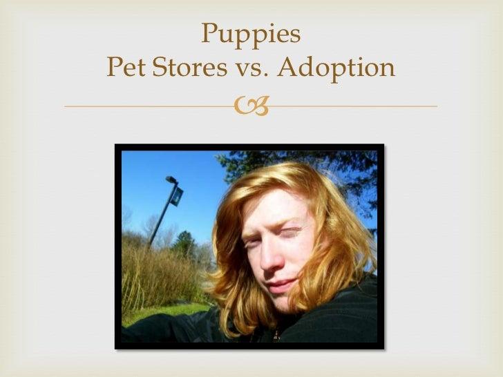 PuppiesPet Stores vs. Adoption          