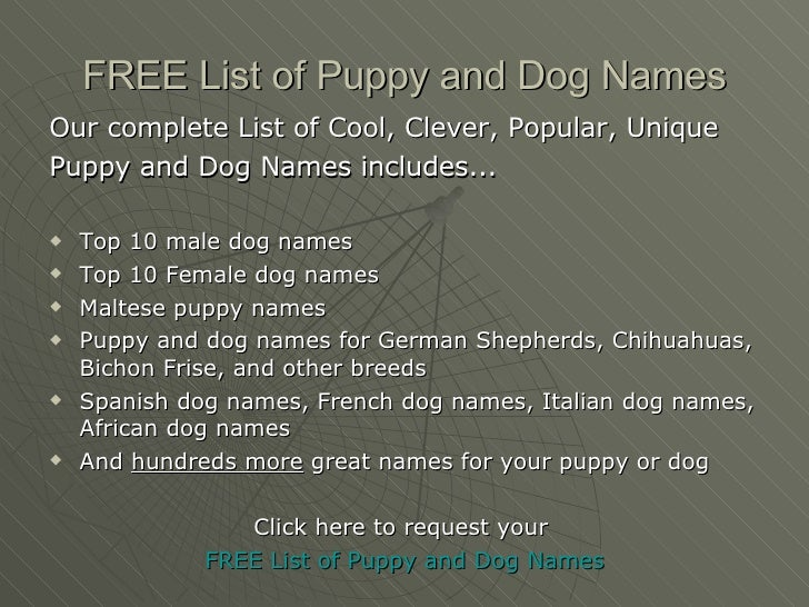 5 FREE List Of Puppy And Dog Names