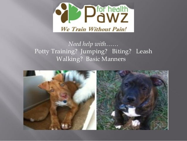 Need help with…… Potty Training? Jumping? Biting? Leash Walking? Basic Manners