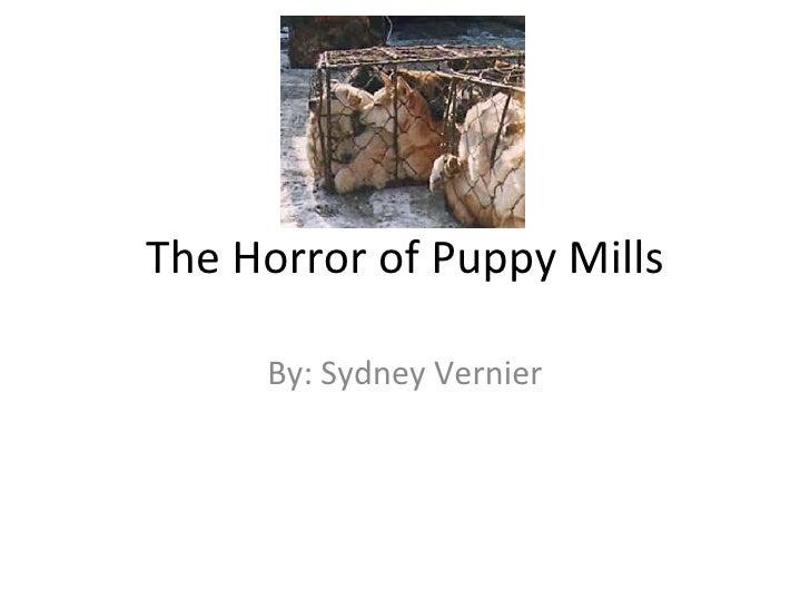 The Horror of Puppy Mills By: Sydney Vernier