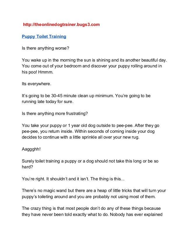 http://theonlinedogtrainer.bugs3.com PuppyToiletTraining Isthereanythingworse? Youwakeupinthemorningthesunis...