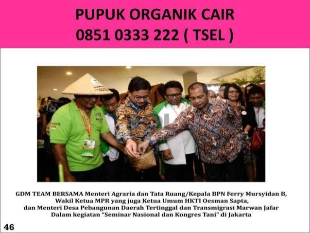 Pupuk Buah 0851 0333 2222 ( TSEL )