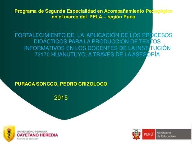 Programa de Segunda Especialidad en Acompañamiento Pedagógico en el marco del PELA – región Puno FORTALECIMIENTO DE LA APL...