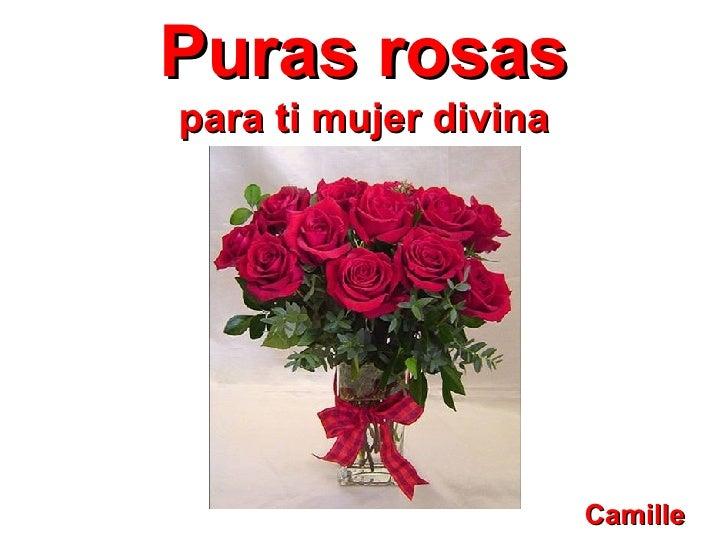 Puras rosas para ti mujer divina Camille