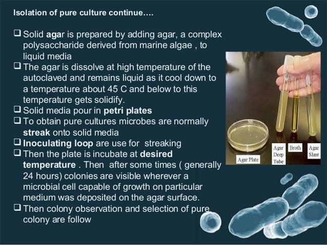 Animal cell culture technique.