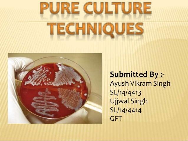 Submitted By :- Ayush Vikram Singh SL/14/4413 Ujjwal Singh SL/14/4414 GFT