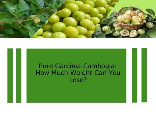 Pure Garcinia Cambogia  Natural Reviews