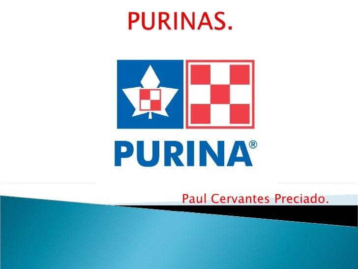 Paul Cervantes Preciado.