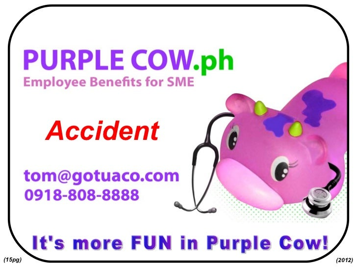 It's more FUN in Purple Cow! Accident (2012) (15pg)