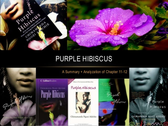 critical analysis of purple hibiscus