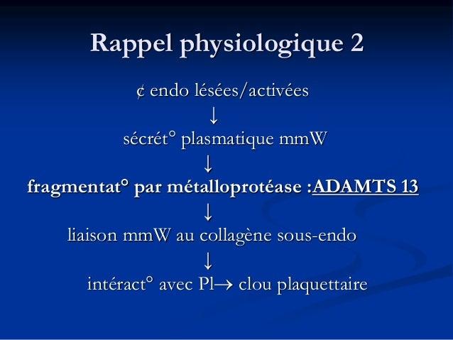 Rappel physiologique 2 ¢ endo lésées/activées ↓ sécrét° plasmatique mmW ↓ fragmentat° par métalloprotéase :ADAMTS 13 ↓ lia...