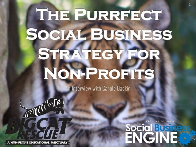 The Purrfect Social Business Strategy for Non-Profits An Interview with Carole Baskin 1