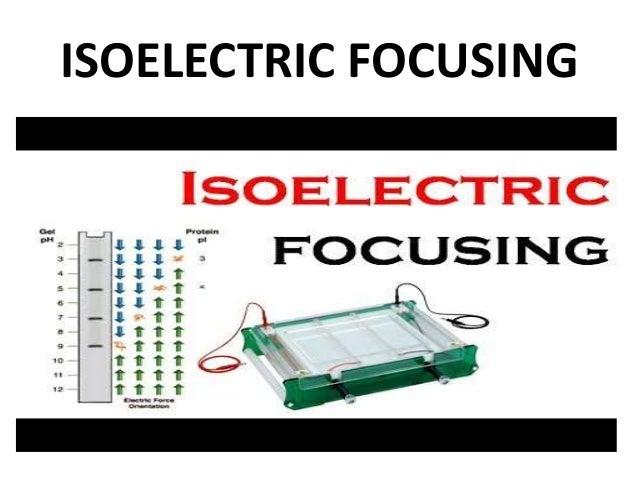 ISOELECTRIC FOCUSING PPT - SLIDE SHARE Slide 3