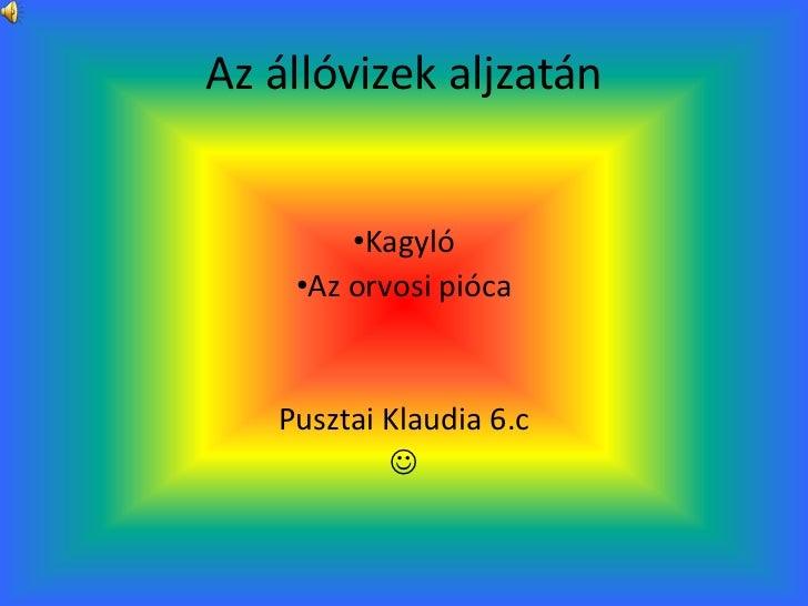 Az állóvizek aljzatán        •Kagyló    •Az orvosi pióca   Pusztai Klaudia 6.c           