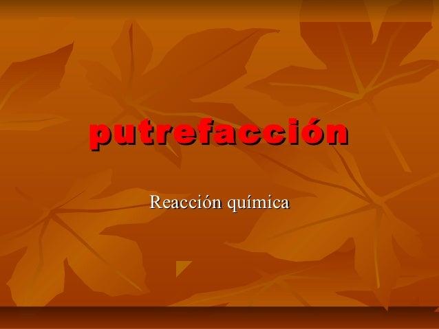 putrefacción  Reacción química