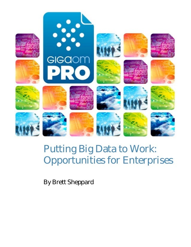 Putting Big Data to Work: Opportunities for Enterprises By Brett Sheppard