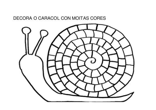 DECORA O CARACOL CON MOITAS CORES