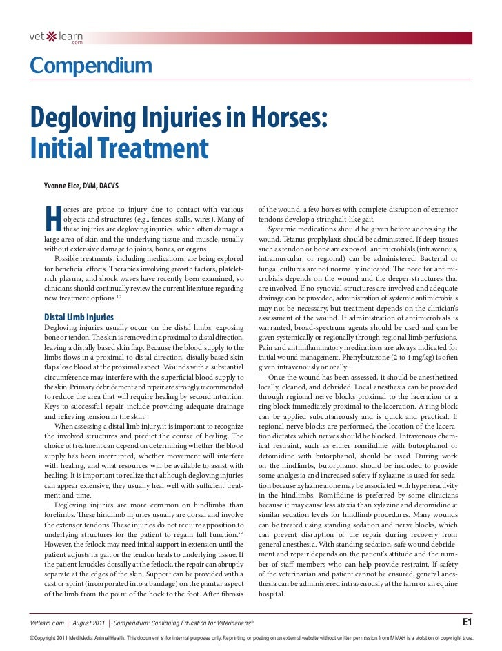 Degloving Injuries in Horses:Initial Treatment      Yvonne Elce, DVM, DACVS      H             orses are prone to injury d...