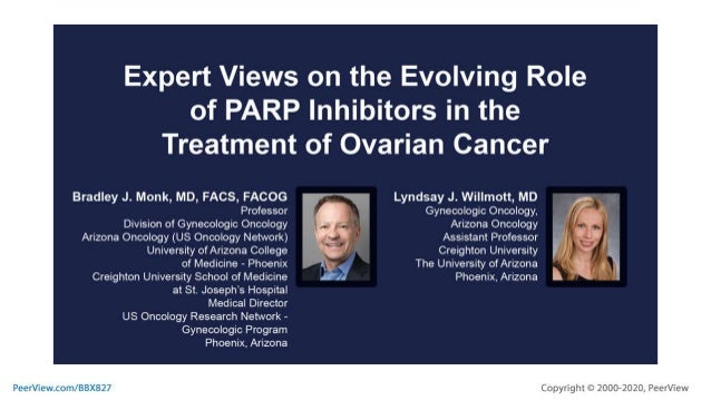 Expert Views on the Evolving Role of PARP Inhibitors in the Treatment of Ovarian Cancer