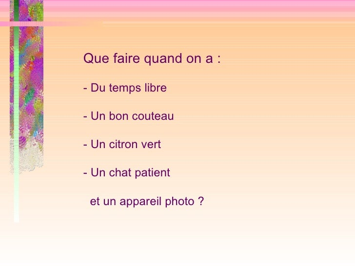 Que faire quand on a : - Du temps libre - Un bon couteau - Un citron vert - Un chat patient et un appareil photo ?