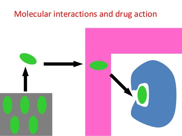 partition coefficients in drug discovery
