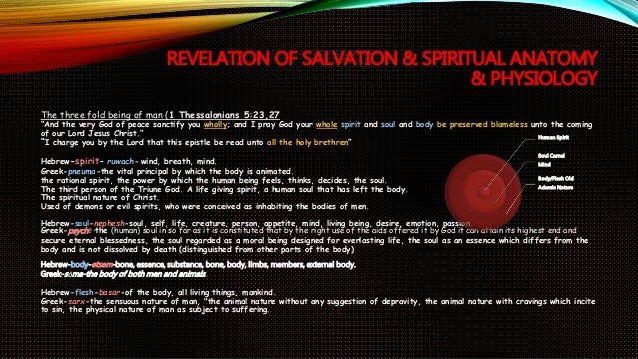 Revelation Salvation & the Tree of Life