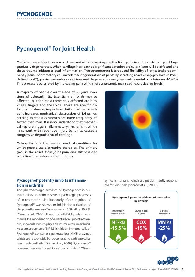 Pycnogenol For Joint Health