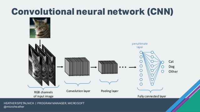 Dog Breed Classification using PyTorch on Azure Machine Learning