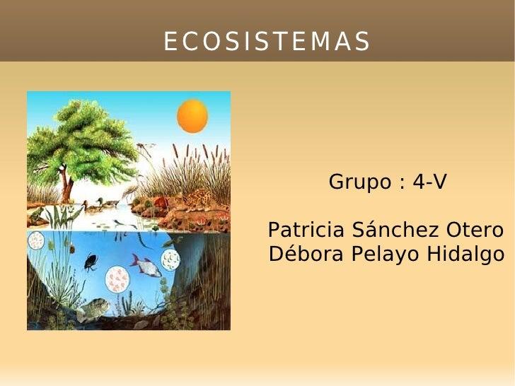 ECOSISTEMAS <ul><ul><li>Grupo : 4-V </li></ul></ul><ul><ul><li>Patricia Sánchez Otero Débora Pelayo Hidalgo  </li></ul></ul>