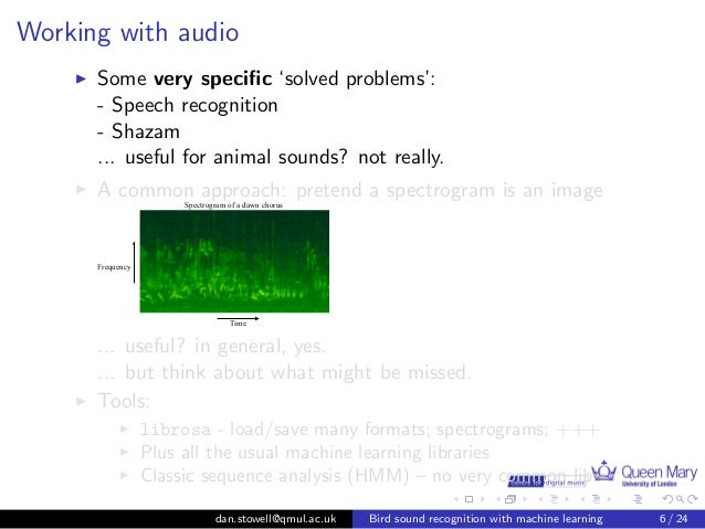 Who's singing? Automatic bird sound recognition with machine
