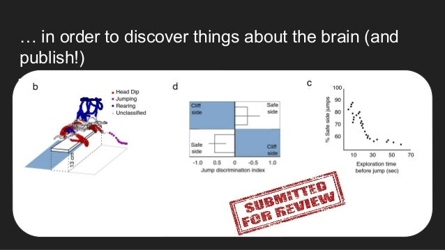 … in order to discover things about the brain (and publish!)