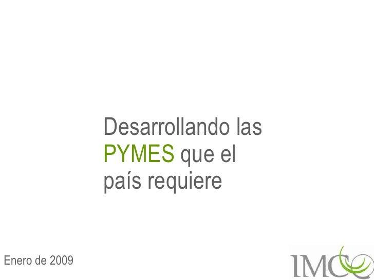 Sectores Económicos / PYMES: Pymes que requiere méxico (2009)