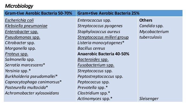 Microbiology Gram-tive Aerobic Bacteria 50-70% Gram+tive Aerobic Bacteria 25% Escherichia coli Klebsiella pneumoniae Enter...