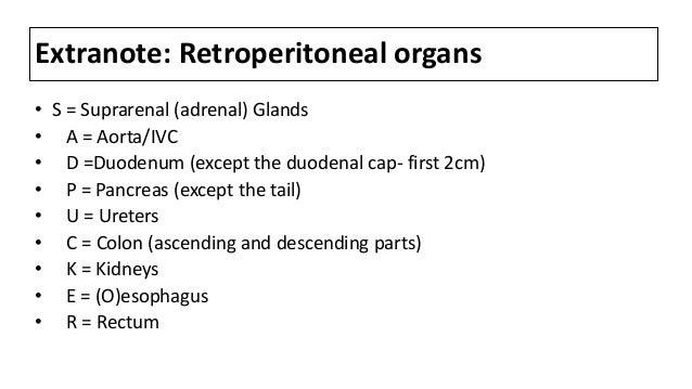 Extranote: Retroperitoneal organs • S = Suprarenal (adrenal) Glands • A = Aorta/IVC • D =Duodenum (except the duodenal cap...